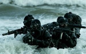 Elementi dell'U.S. Navy SEALS, Forze per Operazioni Speciali della Marina degli Stati Uniti