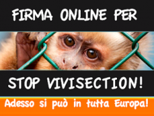 stop-vivisection-300x227