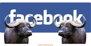 bufala e contro bufala facebook